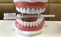 Professionelle Mundhygiene und Parodontitis Therapie